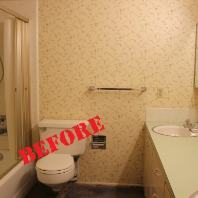 Prove Bathroom (before)