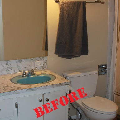 Provo Sink (before)