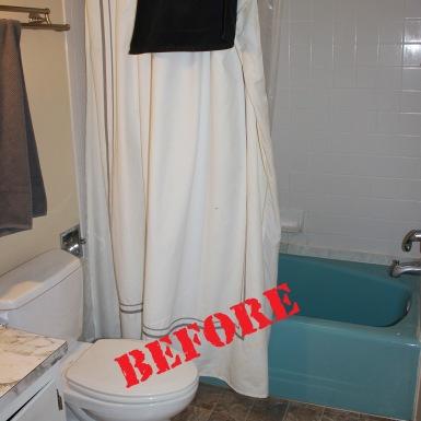 Provo Bathroom (before)